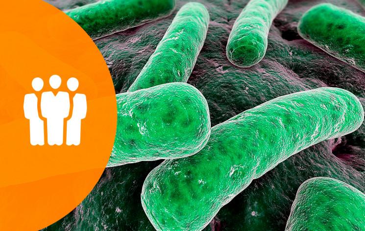 """Coloquios en Santiago – Conferencia:""""Respuestas prematuras e imperfectas respecto a la interacción bacteria-planta"""""""