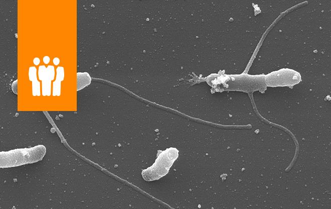 """COLOQUIOS EN VALPARAÍSO Conferencia: """"Adaptación de los microoganismos acidófilos al estrés oxidativo: un asunto de vida o muerte"""""""