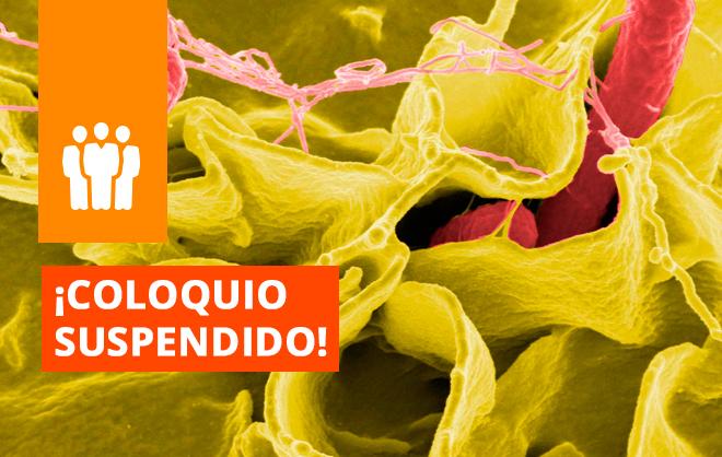 """COLOQUIO EN SANTIAGO SUSPENDIDO, Conferencia: """"Comunidades Microbianas y Potencial Metanogénico de Suelos y Sedimentos Antárticos."""""""