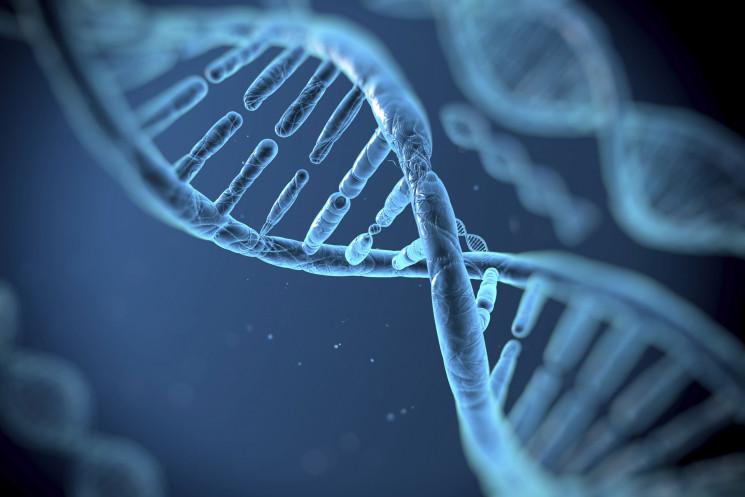 ¿Que nos hace susceptibles a enfermarnos? Identificación de genes humanos que promueven la infectividad de patógenos emergentes