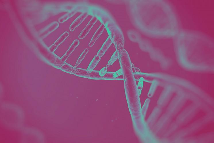 """Coloquios Valparaíso:  """"Identificación de genes humanos que median la susceptibilidad a Vibrio parahaemolyticus mediante la tecnología CRISPR/Cas"""""""