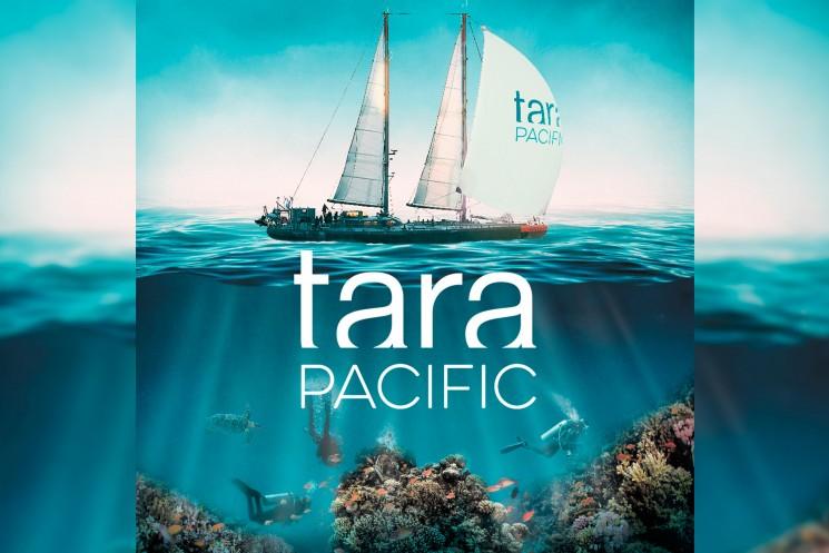 Expedición TAR: entendiendo el cambio global y la crisis ecológica que enfrentan los océanos.