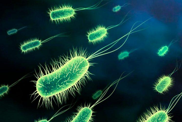 Encuesta a Microbiologos Ambientales ISME