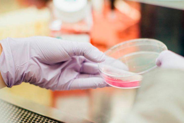 Nuevo programa – Magister en Ciencia, Tecnología y Sociedad UAH