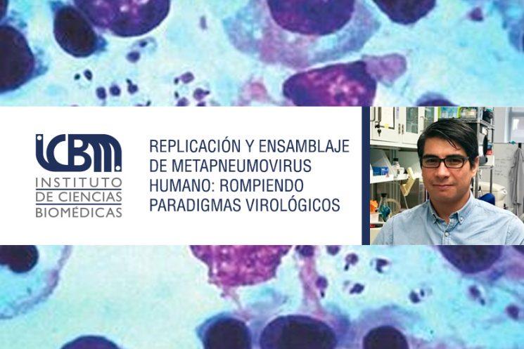 """Conferencia: """"Replicación y ensamblaje de metapneumovirus humano: rompiendo paradigmas virológicos"""""""