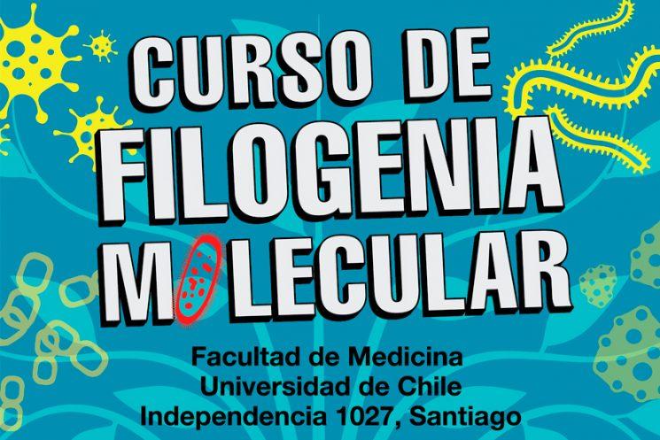 Curso de filogenia molecular