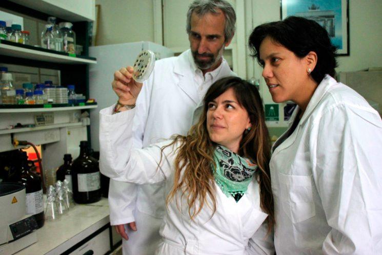 Investigación desarrollada en la USM recibe premio a Mejor Tesis en Microbiología por la SOMICH
