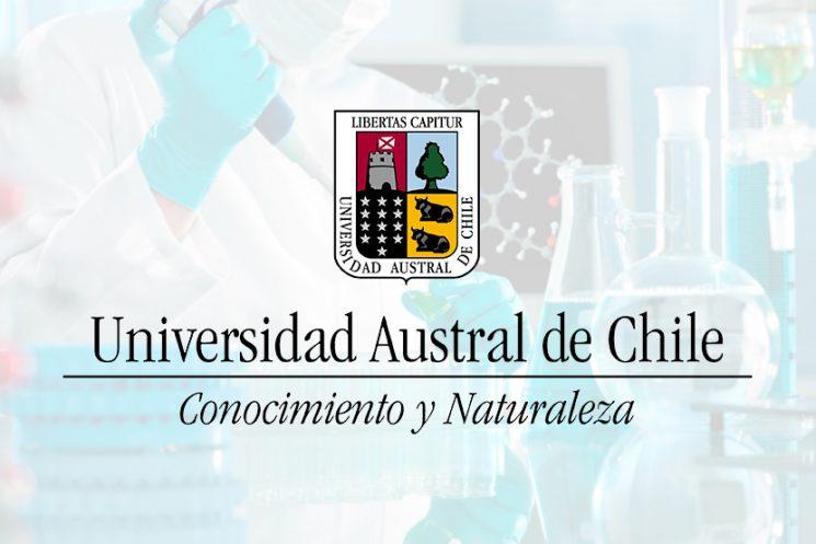 La Universidad Austral de Chile llama a concurso para proveer los siguientes cargos