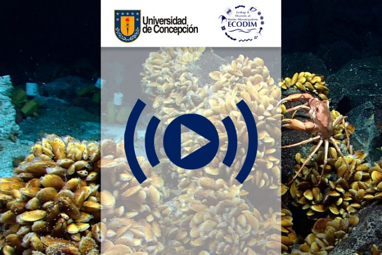 STREAMING MICROBIAL SYMBIOSIS IN THE MARINE ENVIRONMENT ECODIM2018