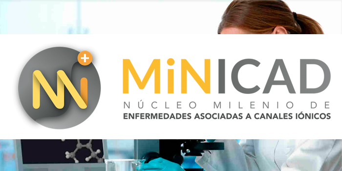 Call of Application for Postdoctoral Positions MiNICAD 2018