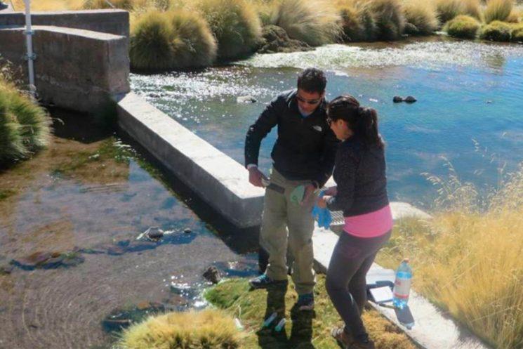 Investigadores chilenos remueven 100% del arsénico utilizando Pseudomonas. De momento se realizaron pruebas en laboratorio donde eliminaron el tóxico del agua del río Loa, el cual presenta casi 100 veces la concentración de arsénico recomendado por la OMS.