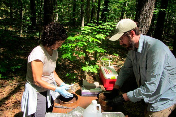 Microbióloga es reconocida por la National Science Foundation de Estados Unidos