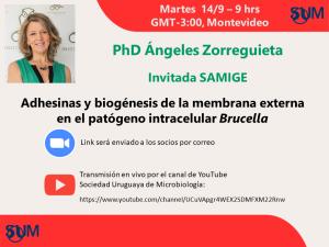 """Webinar """"Adhesinas y biogénesis de la membrana externa en el patógeno intracelular Brucella"""""""